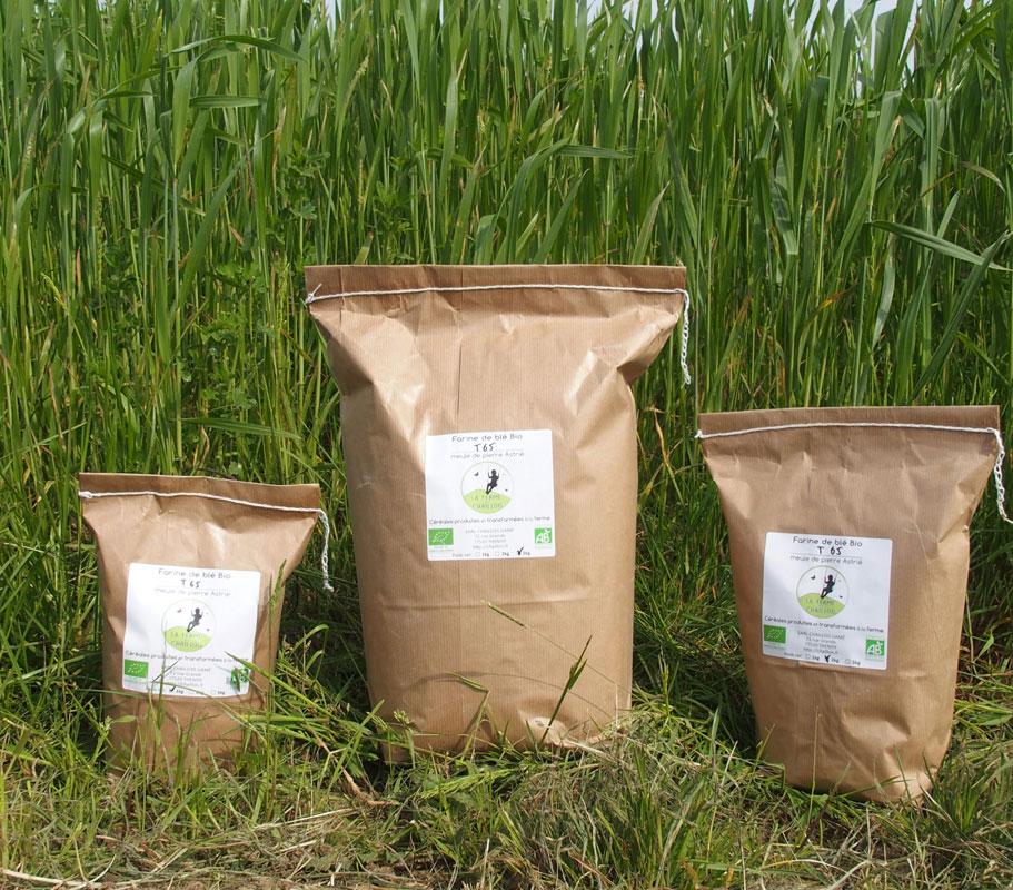 3 formats de farine